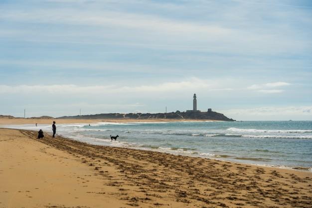 hermosa-foto-playa-arena-zahora-espana_181624-15089